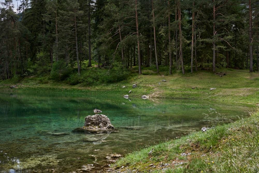 Gruner-See-Oostenrijk