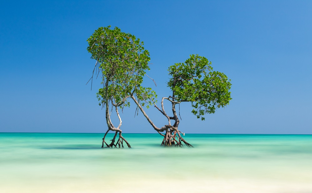 Noord-Sentineleiland-India