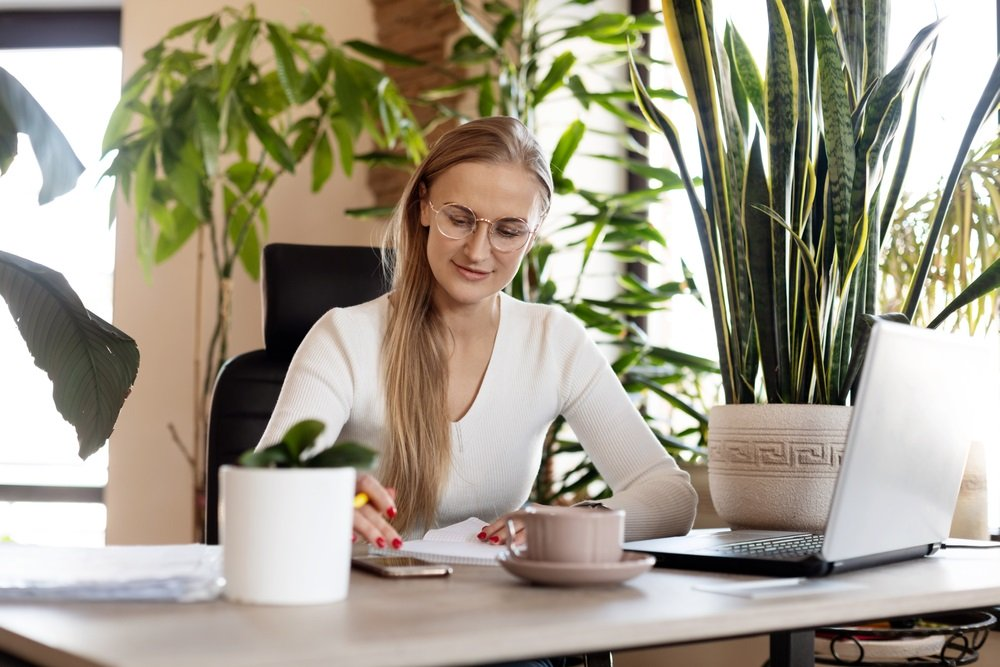 Top 10 meest geschikte kantoorplanten